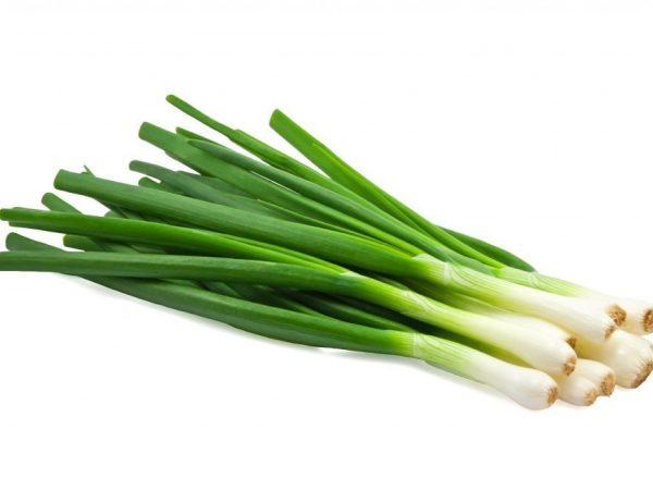 зеленный лук