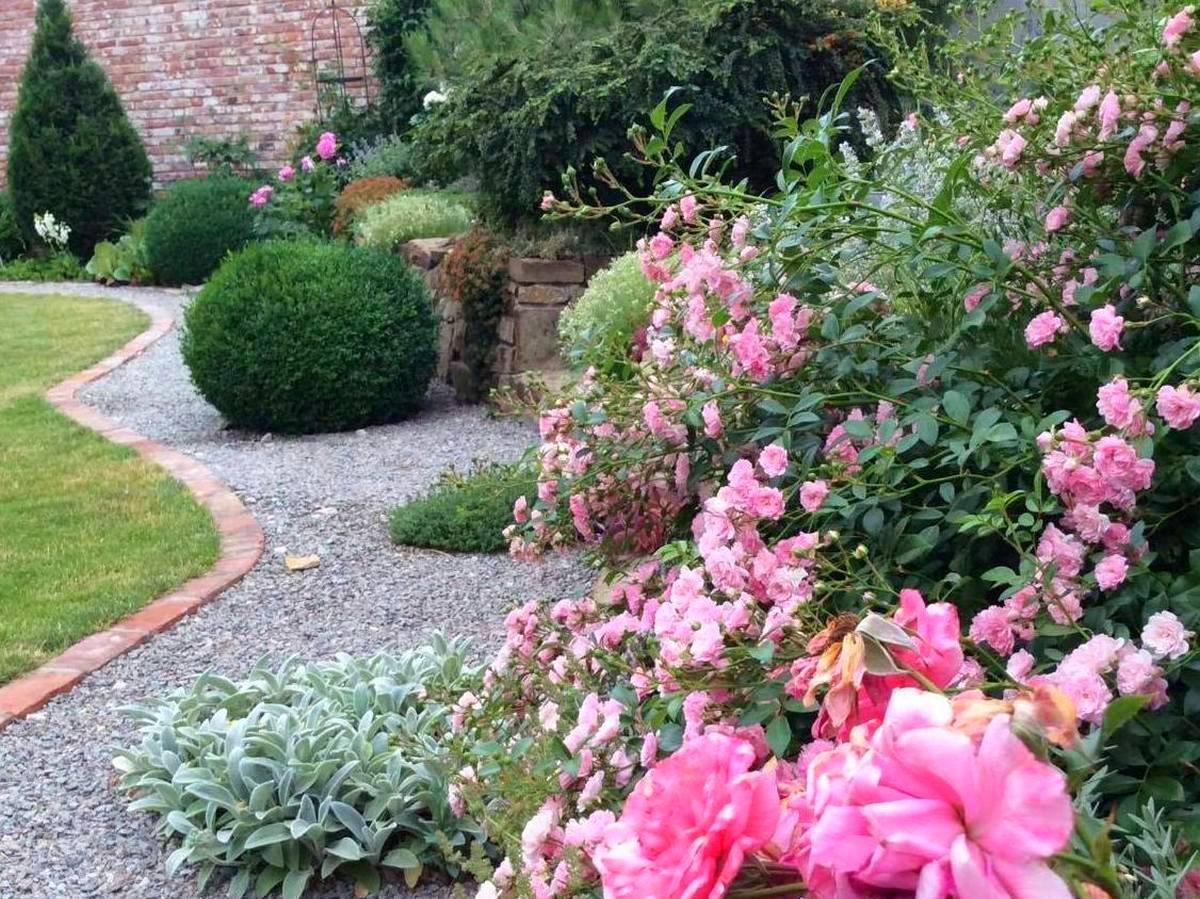 блоги садоводов